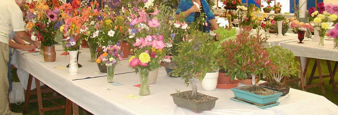 Spaxton Summer Flower Show Cut Flower division